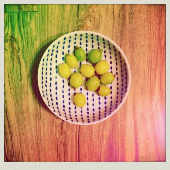 0525-橄欖