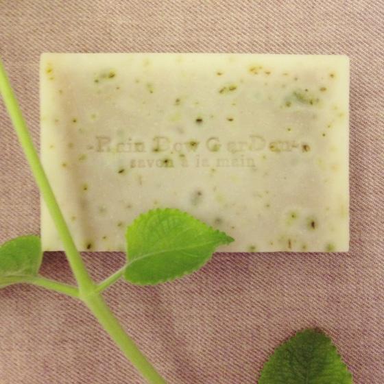 左手香不再過敏皂。Plectranthus Amboinicus Soap